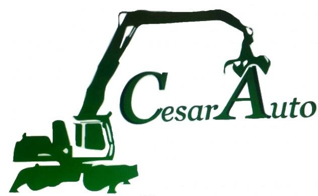 CesarAuto1 demolizione auto